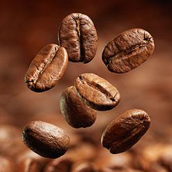 Kvalitná káva pre labužníkov